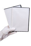 Isolato - caso in bianco DVD/CD Immagine Stock Libera da Diritti