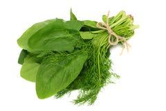Isolato delle foglie degli spinaci su fondo bianco Alimento sano fotografia stock