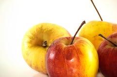 Isolato maturo delle mele su fondo bianco Immagini Stock