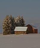 Isolato nella neve Immagini Stock Libere da Diritti