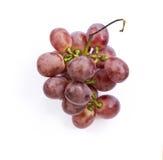 Isolato porpora dell'uva sui precedenti bianchi immagine stock libera da diritti