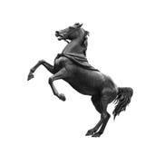 Isolato sulla scultura nera bianca del cavallo Fotografie Stock