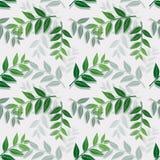 Isolato tropicale delle foglie su fondo bianco, modello senza cuciture di ripetizione per il tessuto, tessuto, copertura, stampa  illustrazione vettoriale