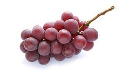 #2 isolato uva succosa giapponese Fotografia Stock Libera da Diritti