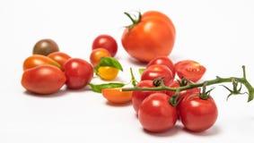 Isolats de tomate-cerise de tomate photo stock