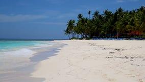 Isole bianche della sabbia con i cocchi nei Caraibi stock footage