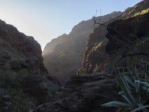 Isole Canarie, Tenerife, gola con le rocce, a della valle di Masca del canyon Immagine Stock