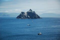 Isole con i gannets di incastramento Fotografia Stock