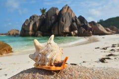 Isole delle Seychelles, La Digue, grande spiaggia di Anse Immagini Stock Libere da Diritti