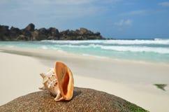 Isole delle Seychelles, La Digue, grande spiaggia di Anse Fotografie Stock Libere da Diritti