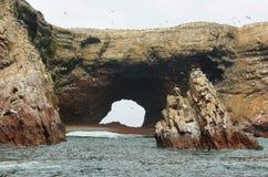 Isole di Ballestas nel Perù Immagine Stock Libera da Diritti