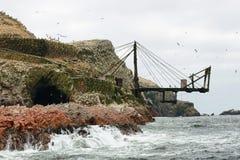 Isole di Ballestas nel Perù Fotografia Stock