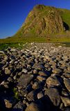 Isole di Lofoten Fotografie Stock