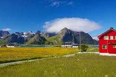 Isole di Lofoten in Norvegia Fotografia Stock Libera da Diritti