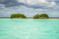 Isole di uccello 2 Fotografia Stock Libera da Diritti