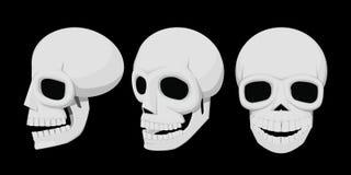 Isoleer schedel 3view royalty-vrije illustratie