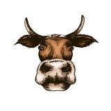 Isoleerde de schets vectorillustratie witte koe Stock Foto