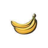 Isoleert de bananen retro illustratie op witte achtergrond Stock Foto's