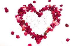 Isolement de coeur de fleur photographie stock libre de droits