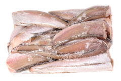 Isolement gelé de merluches de poissons sur le blanc Photographie stock