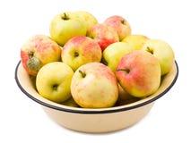 Isolerad äppleträdgård Royaltyfri Fotografi