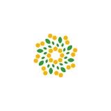 Isolerad abstrakt färgrik blomma på den vita bakgrundslogoen Prickig blom- kronbladlogotyp Naturligt beståndsdeltecken Royaltyfri Fotografi