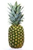 isolerad ananas arkivbilder