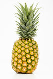 Isolerad ananas Arkivbild