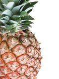 isolerad ananaswhite arkivbilder