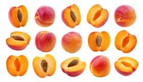 isolerad aprikos Samling av aprikors som isoleras på vit bakgrund royaltyfri fotografi