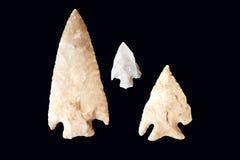 isolerad arrowheadsblack Arkivbild