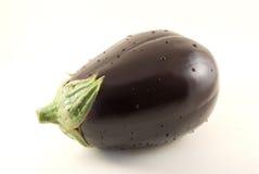 isolerad aubergine Arkivbilder