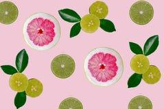 Isolerad backround för Pomelo och för limefrukt frukt royaltyfria foton