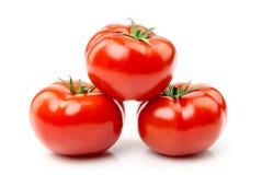 Isolerad bild av en tomat på en vit bakgrund Arkivfoto