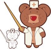 isolerad björndoktor Arkivbilder