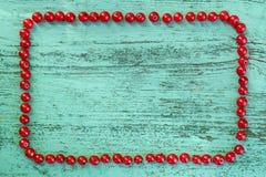 Isolerad blåbärfilial Arkivfoto