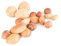 isolerad blandad nuts white Arkivbild