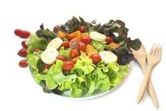 Isolerad blandad sallad för nya grönsaker Royaltyfri Fotografi