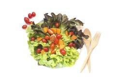 Isolerad blandad sallad för nya grönsaker Royaltyfria Foton