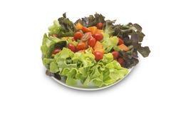 Isolerad blandad sallad för nya grönsaker Royaltyfria Bilder