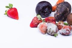 Isolerad bortskämd jordgubbe Arkivfoton