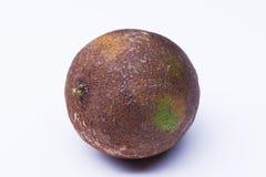 Isolerad bortskämd limefrukt Arkivbild