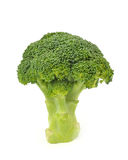 isolerad broccoli Royaltyfria Bilder