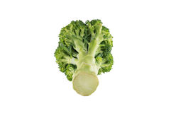 isolerad broccoli Royaltyfria Foton