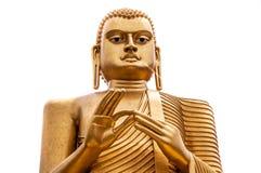 Isolerad Buddhastaty i Colombo, Sri Lanka Royaltyfri Bild