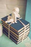 isolerad buntwhite för bakgrund böcker Royaltyfri Bild