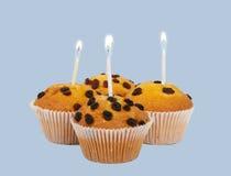 isolerad cakefrukt Royaltyfria Bilder