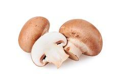 isolerad champinjon för champignon clipping över banawhite Royaltyfria Foton