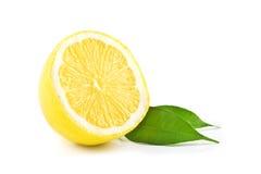 isolerad citron Royaltyfri Foto