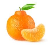 Isolerad clementinecitrusfrukt Arkivfoton